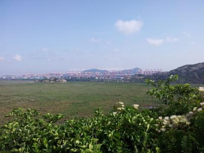 Hafen von Yangshan
