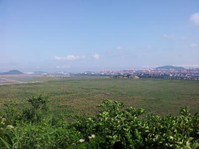Hafenanlagen von Yangshan