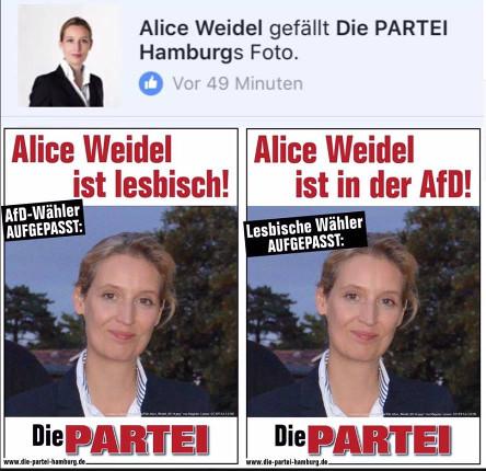 Titanic und Alice Weidel